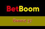 Как играть в Бинго Бум 37 онлайн?